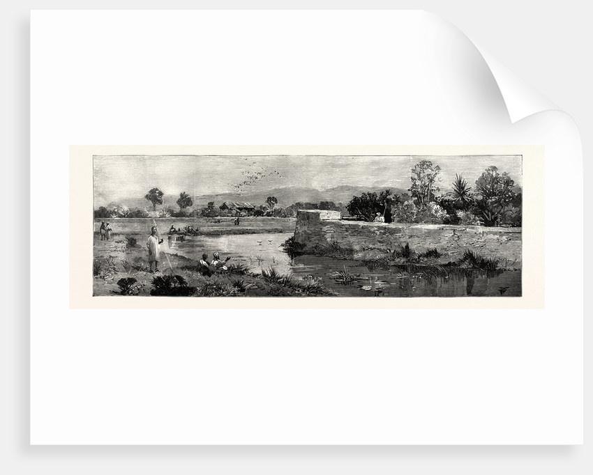 View of the British Residency Manipur Where Mr. Quinton and Col. Skene Were Captured Showing the Moat by Anonymous