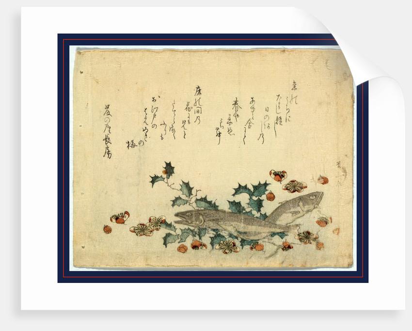 Hiiragi ni iwashi ni ume, Sardines and plums on holly by Ryuryukyo Shinsai