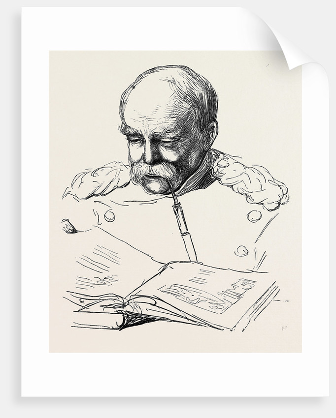 Prince Bismarck, 1877 by Anonymous