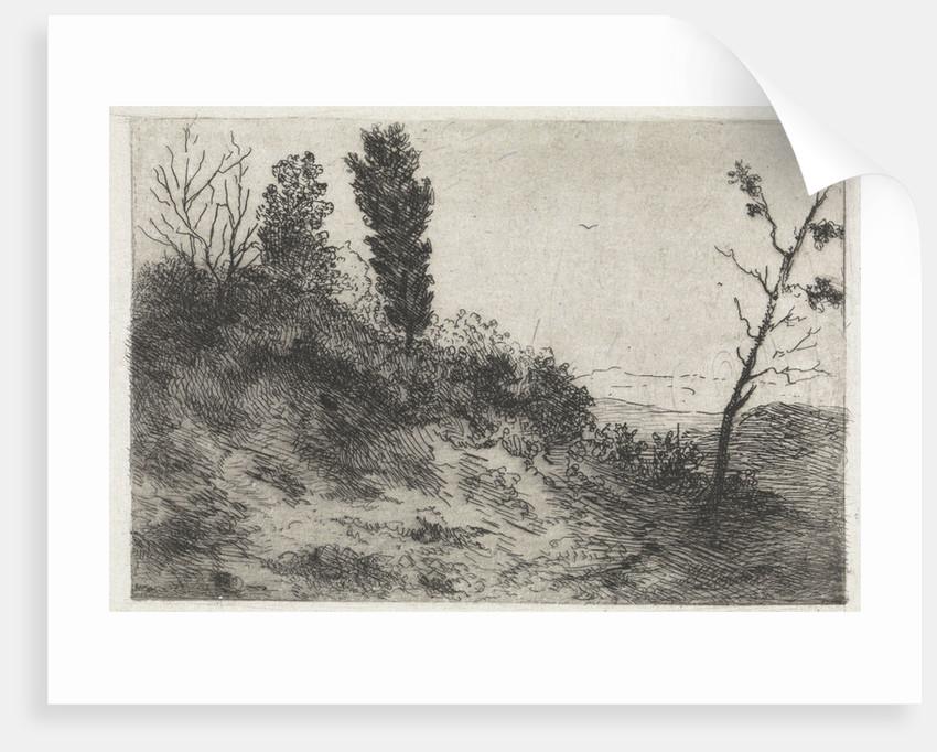 Dunes by Arnoud Schaepkens