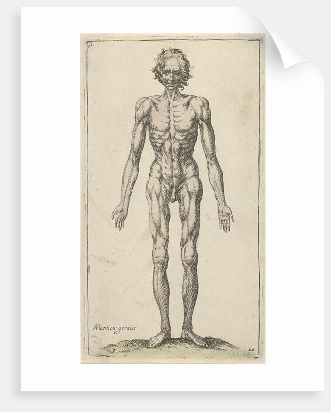 Study of a naked man by Pieter Feddes van Harlingen