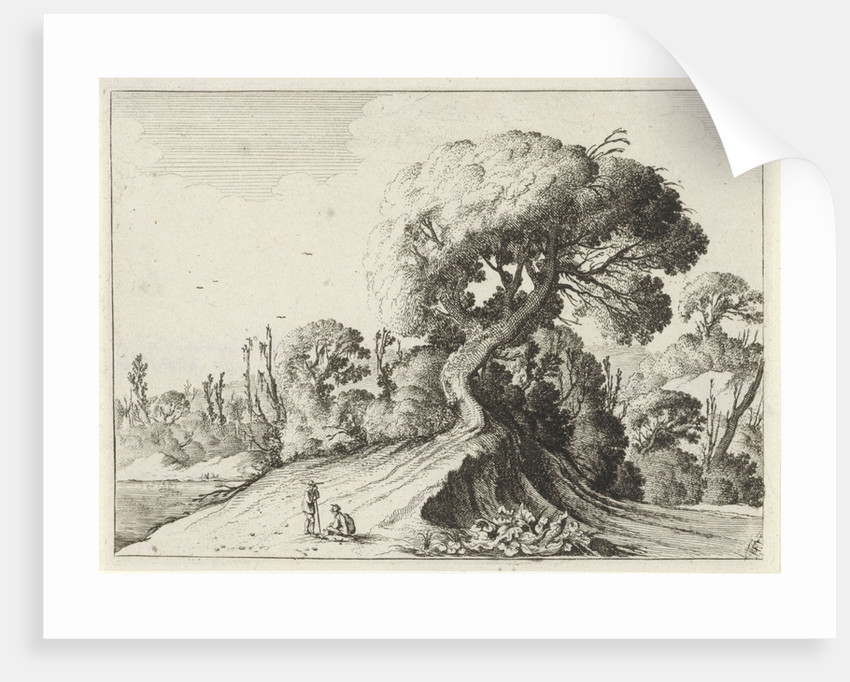 Two men for a large tree by Gillis Scheyndel I