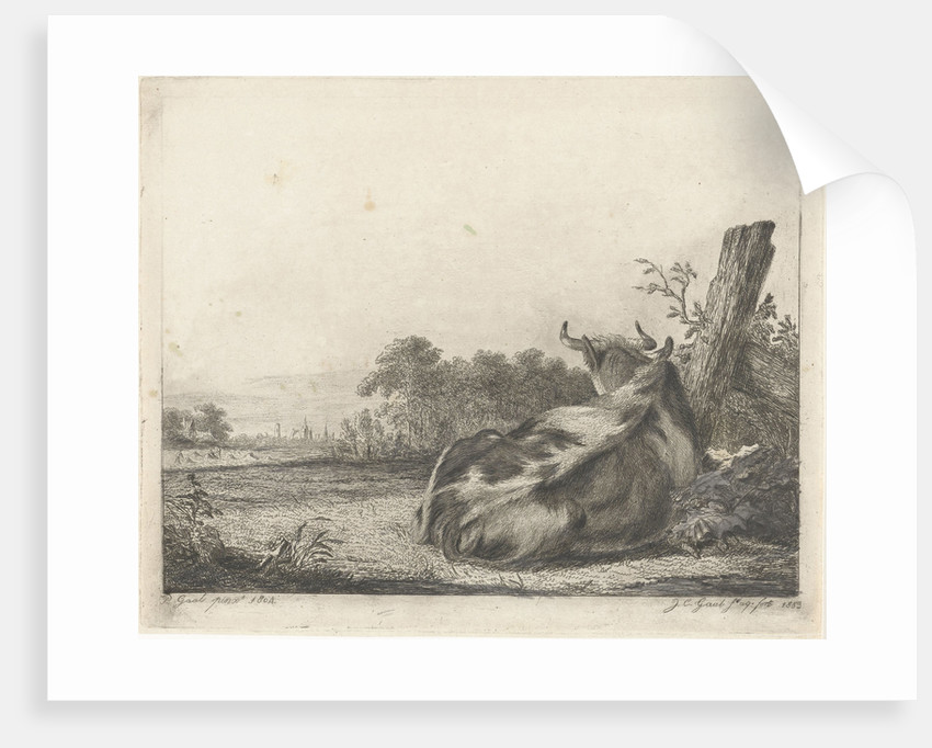 Spotted cow lying near a wooden pole by Jacobus Cornelis Gaal