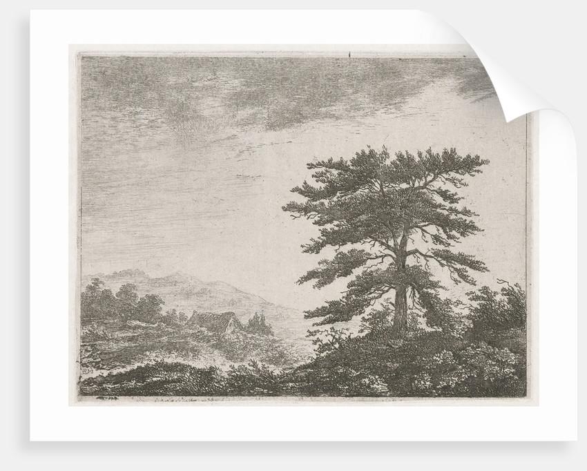 Tree in a moorland by Christiaan Wilhelmus Moorrees
