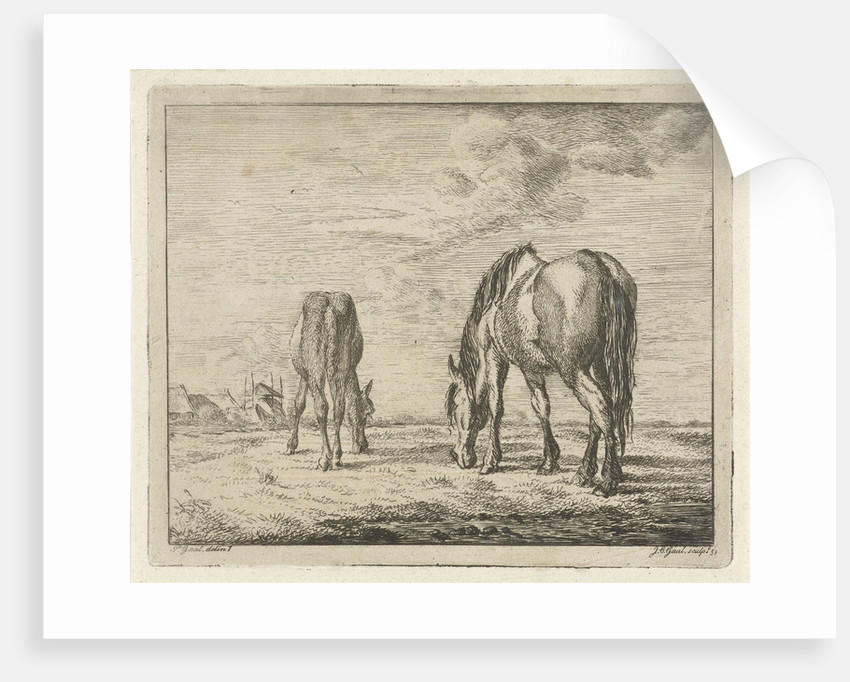Two grazing horses by Pieter Gaal