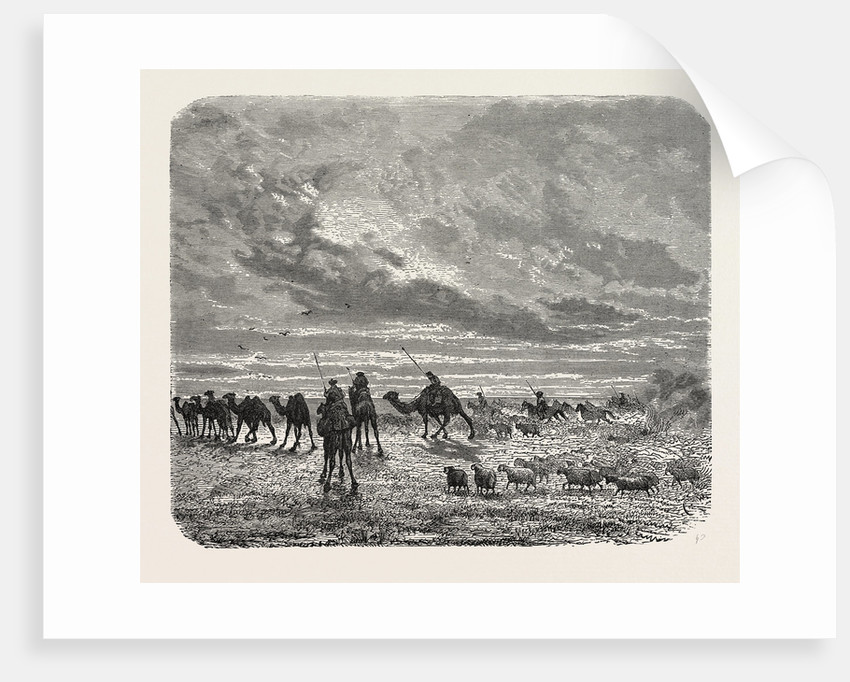 A Mongol Camp on the Move by Anonymous