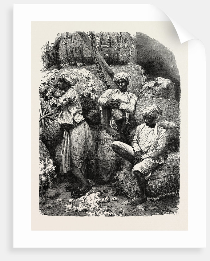 Indian Cotton Operatives by Anonymous