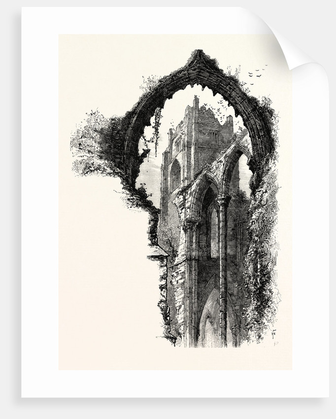 Fountains Abbey by Anonymous