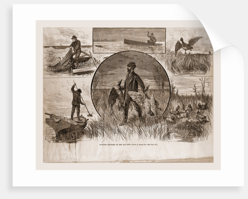 Cruelties Practiced On Fish And Fowl, 1880 by Anonymous