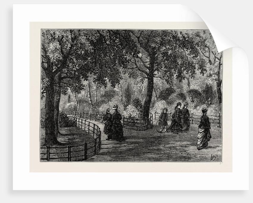 The Flower Walks, Kensington Gardens by Anonymous