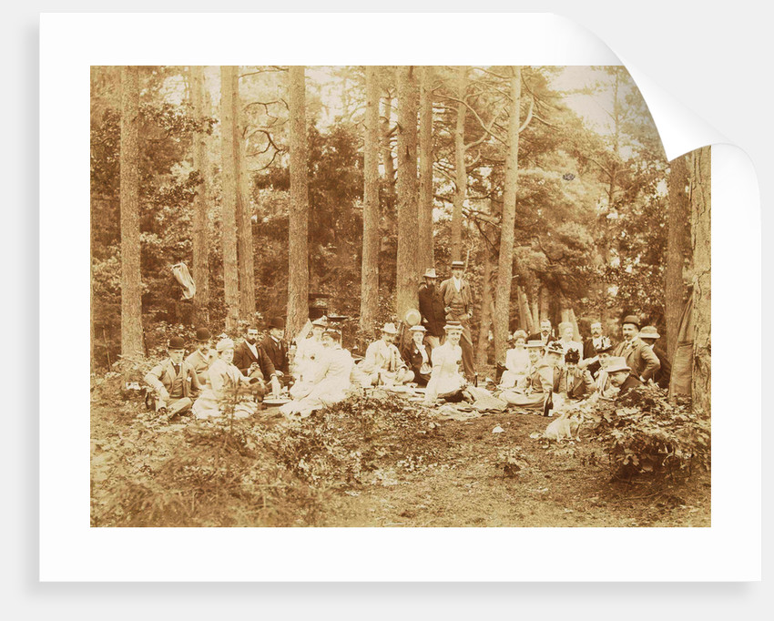 Group portrait of 23 men and women during a picnic in a forest by Henry Pauw van Wieldrecht