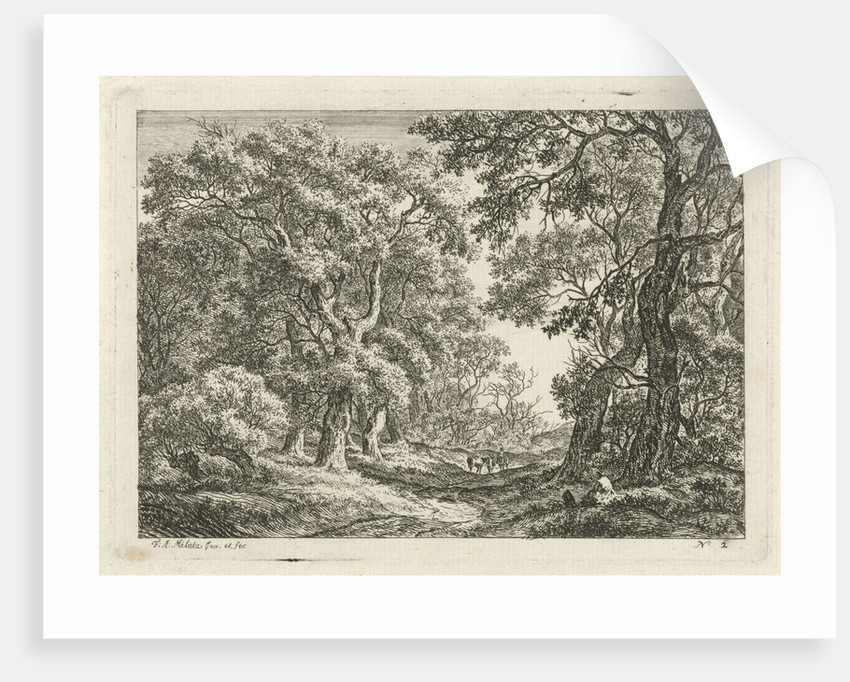 Road between trees by Franciscus Andreas Milatz