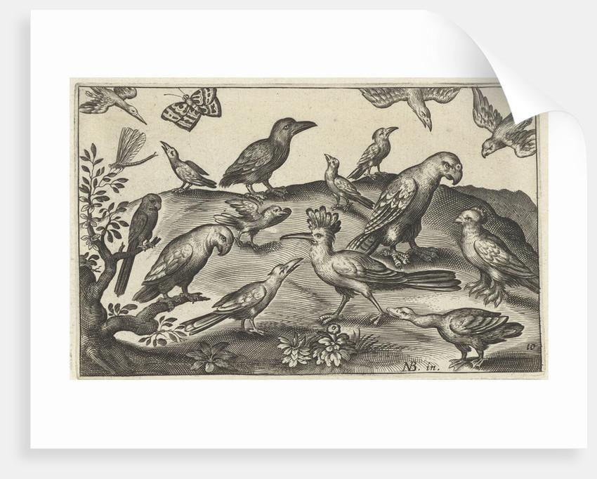 Hop and other birds by Claes Jansz. Visscher II