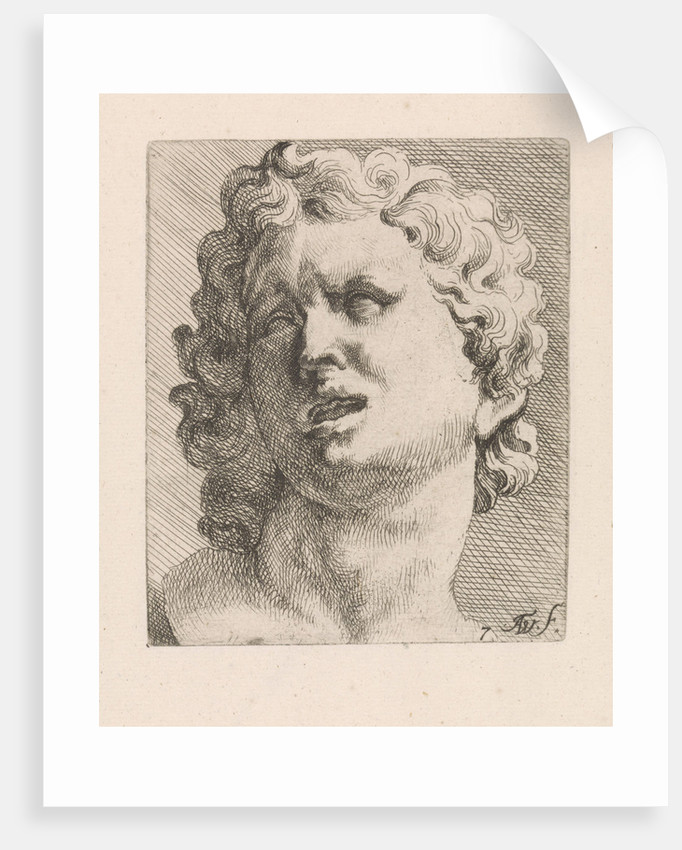 Head of one of the sons of Laocoön, front view by Augustinus Terwesten I