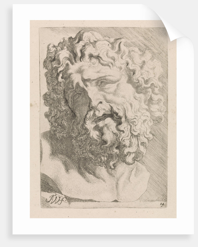 Head of Laocoön by Augustinus Terwesten I
