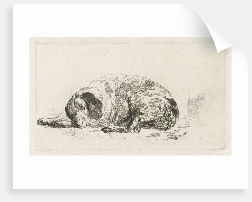 Lying dog by Pieter Gerardus van Os