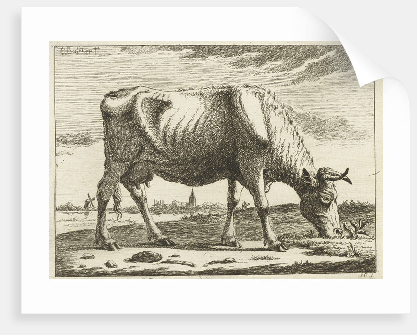 landscape with grazing cow by Cornelis Bisschop
