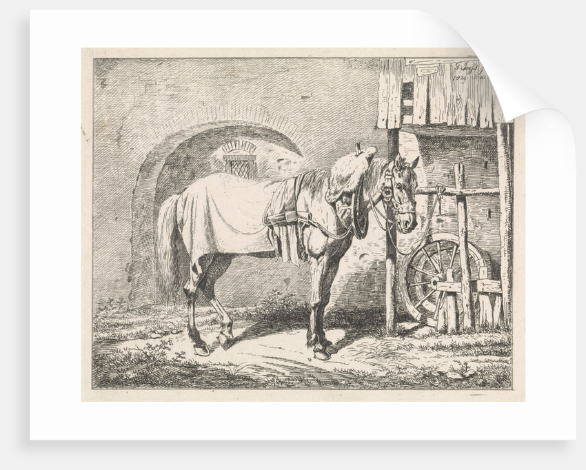Refitted horse a bridle by George Jooss