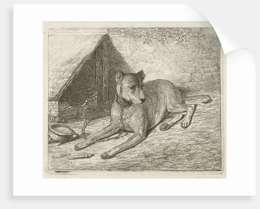 Dog on a chain with a doghouse by Johannes Mock