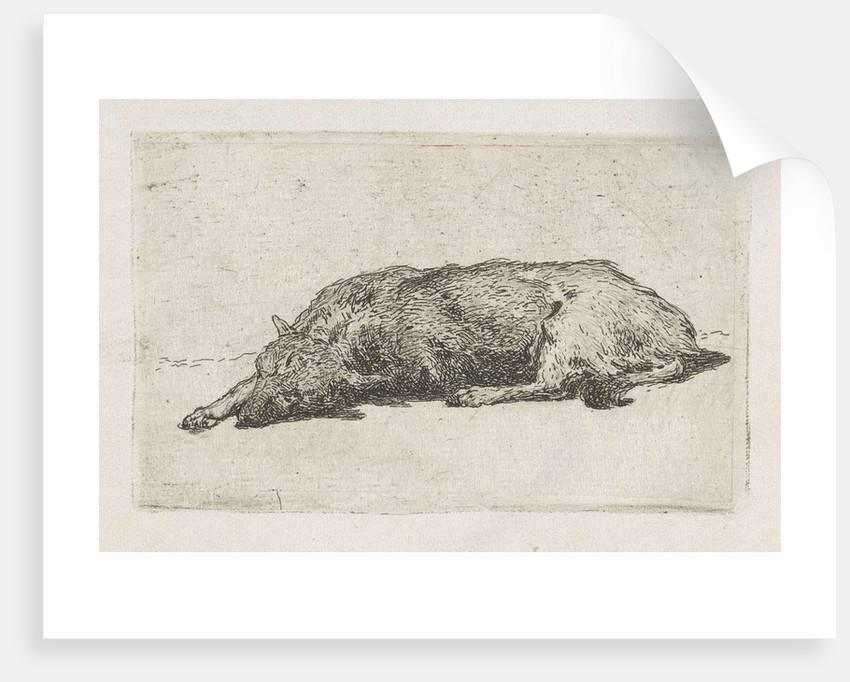 Sleeping dog by Jan Weissenbruch