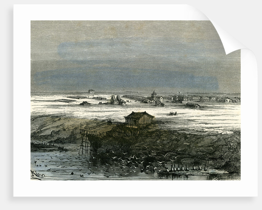 Islay Peru 1869 by Anonymous