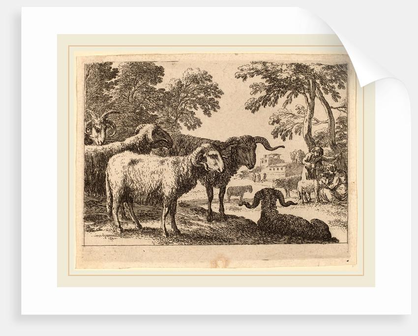 Rams by Herman van Swanevelt