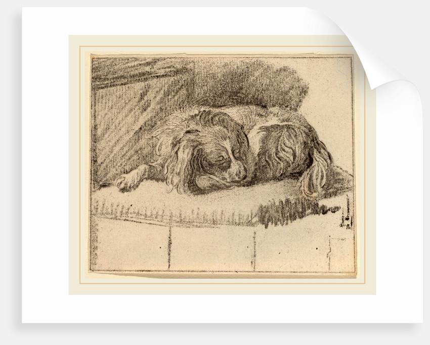 Lying Dog, 1777 by Cornelis Ploos van Amstel and Cornelis Brouwer