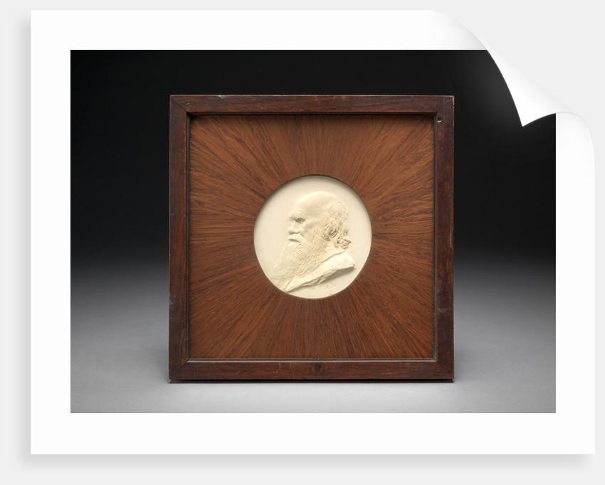 Charles Darwin by Alphonse Legros