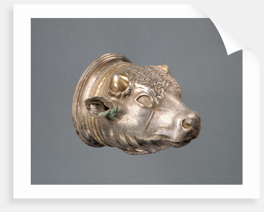 Bull's Head Cup with separable liner by Anonymous