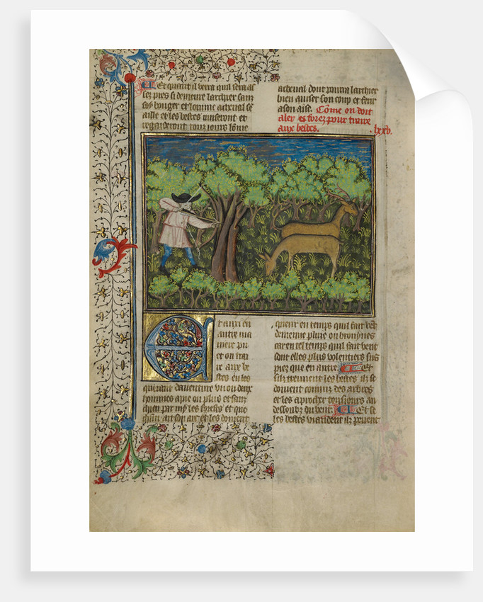 An Archer Shooting at Deer by Anonymous
