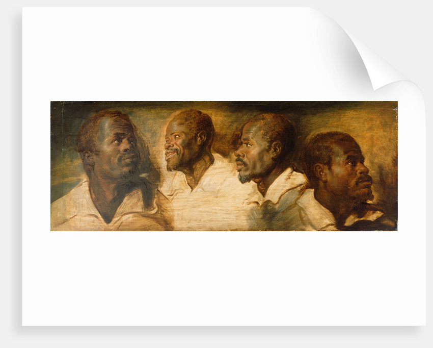 Four Studies of a Male Head by Workshop of Peter Paul Rubens
