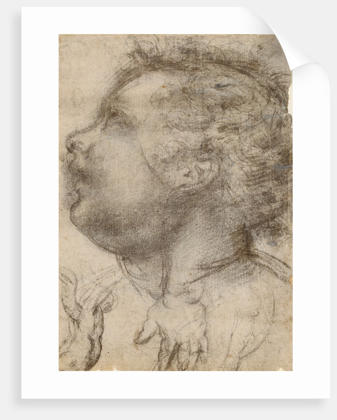 Head of a Child, an Angel and a Hand (recto), Male Figure (verso) by Fra Bartolommeo