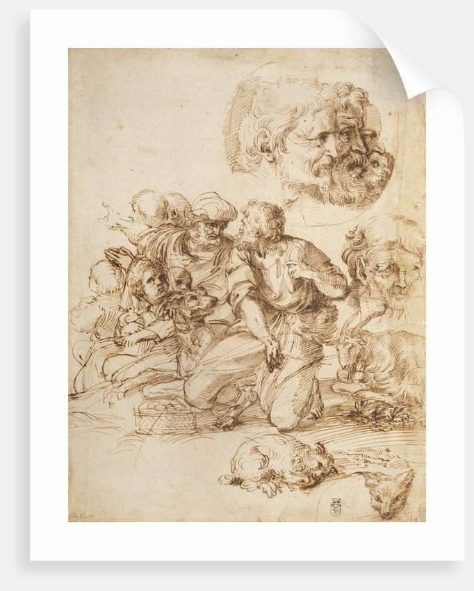 A Group of Shepherds, and Other Studies by Agostino Carracci
