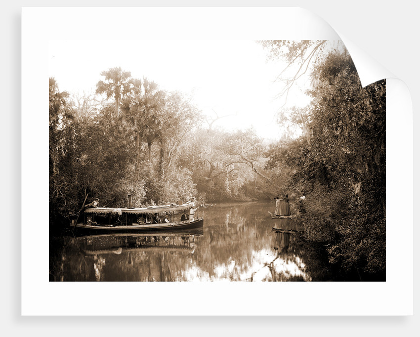 Boating on the Tomoka, Jackson, Steamboats, Rivers, United States, Florida, Tomoka River, 1880 by William Henry