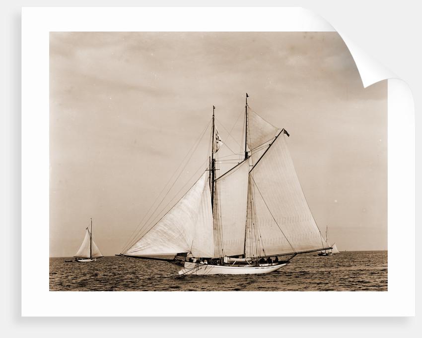 Monhegan, August 1, 1890, Monhegan (Yacht) by Anonymous