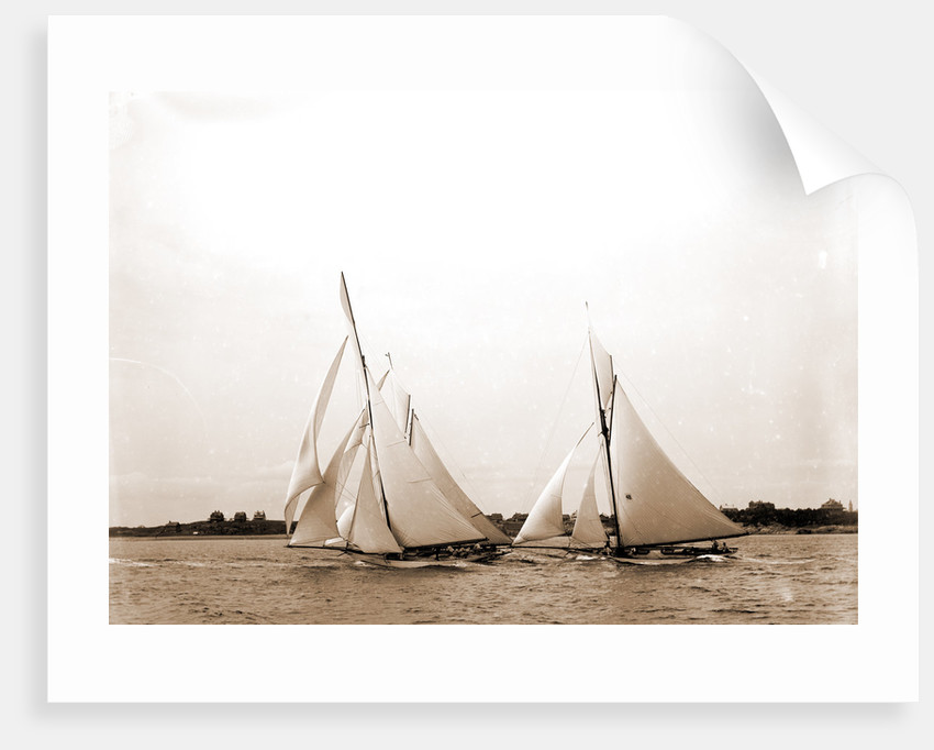 Start, forty footers, August 18, 1890, Regattas, 1890 by Anonymous