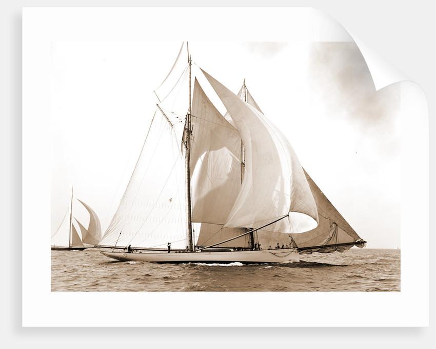 Mayflower, Goelet Cup Race, Mayflower (Schooner), 1891 by Anonymous