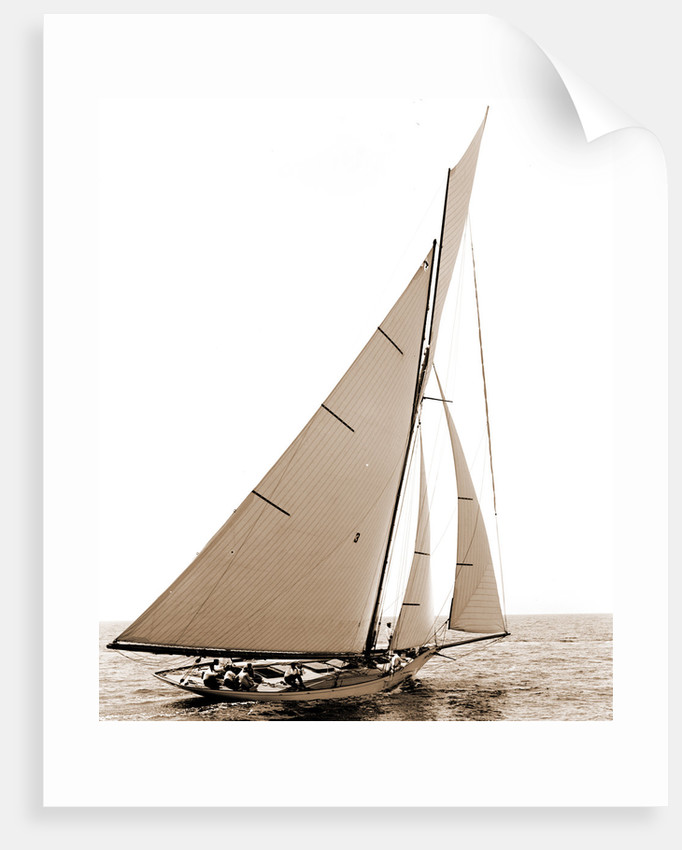Beatrix, Corinthian sweepstakes, Corinthian Yacht Club, Harpoon (Yacht) by Anonymous