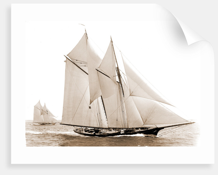 Fortuna (Schooner), 1892 by Anonymous