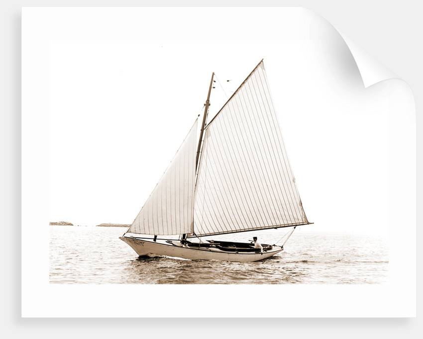 Carl (Sailboat), 1880 by Anonymous