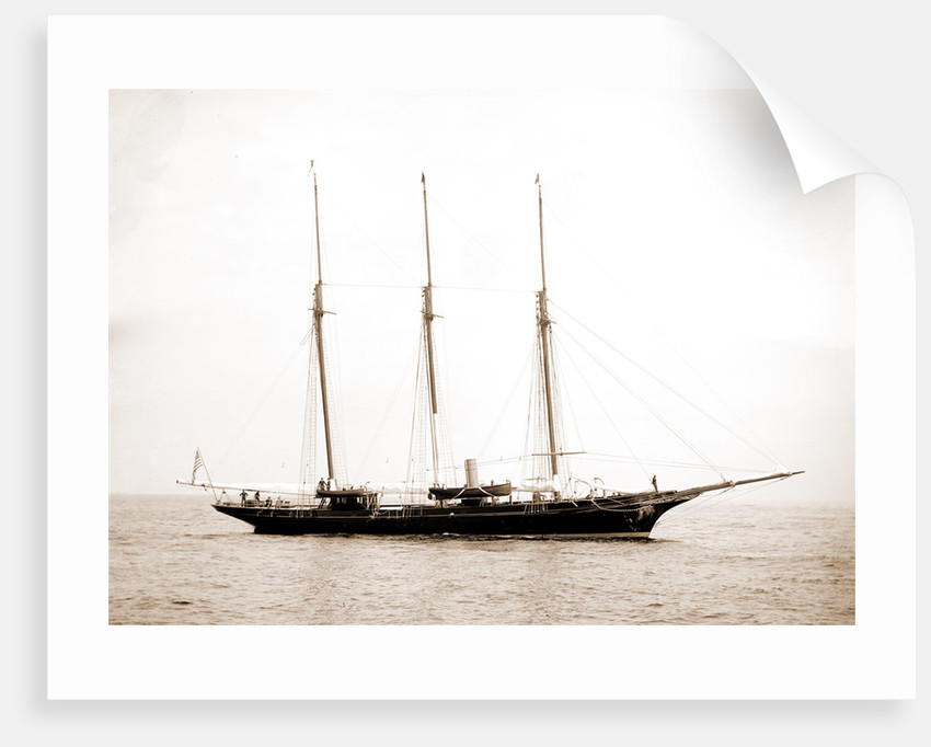 Intrepid (Steam yacht), 1892 by Anonymous