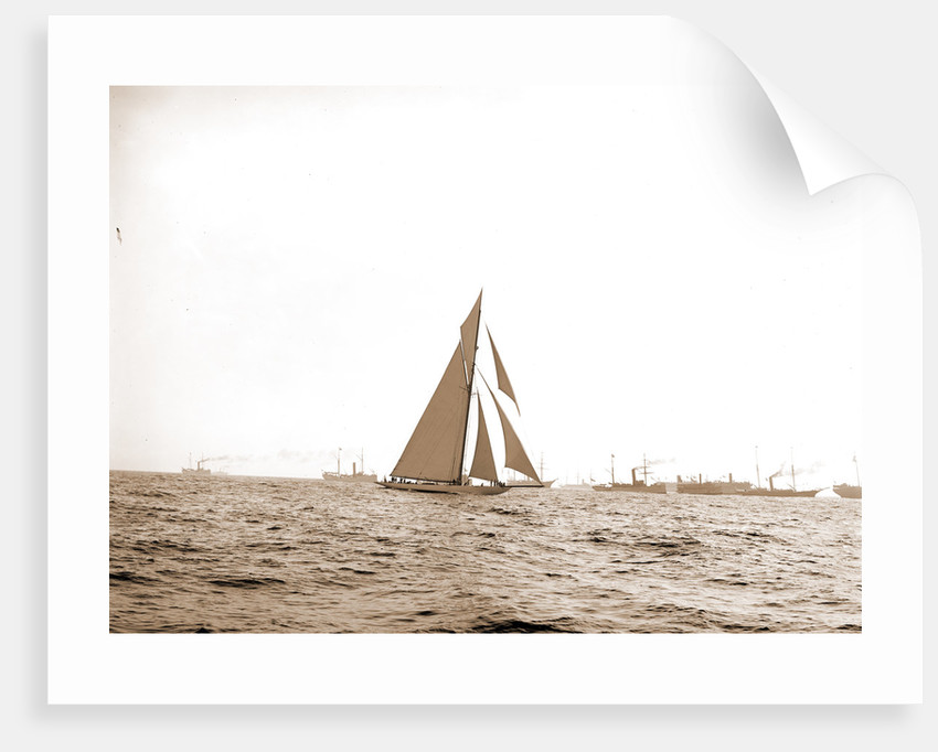 Columbia at the finish, Columbia (Sloop), 1899 by Anonymous