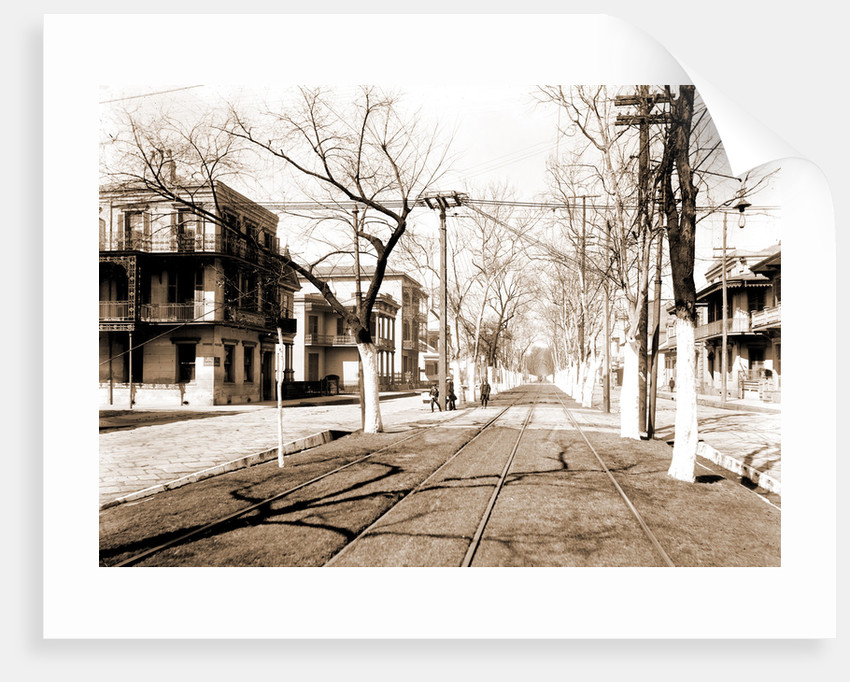 Esplanade Street, New Orleans by Anonymous