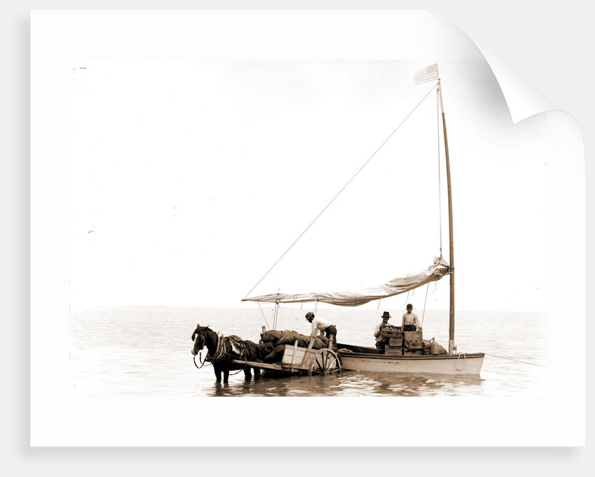 Coast traders, Key West by Anonymous