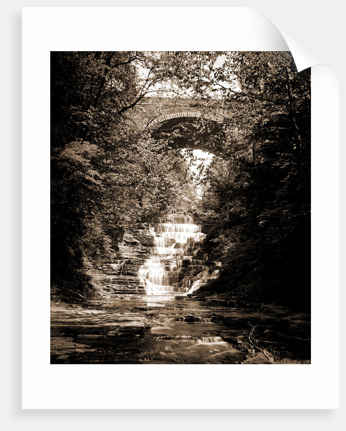 Cascadilla Gorge, Ithaca by Anonymous
