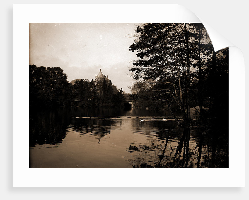 A Lake view in Central Park, New York by Anonymous