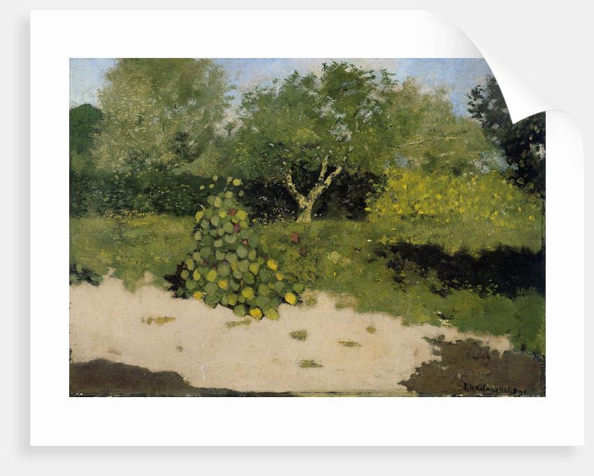 Garden Corner with nasturtium, Tropaeolum majus by Richard Roland Holst