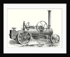 Fowler's Traction Engine for Steam Ploughing by Anonymous