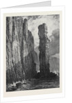 The Old Man of Hoy, at the Winter Exhibition of the Society of Painters in Water Colours 1873 by Anonymous