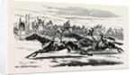 The Deciding Heat for the Cesarewitch Stakes 1857 by Anonymous